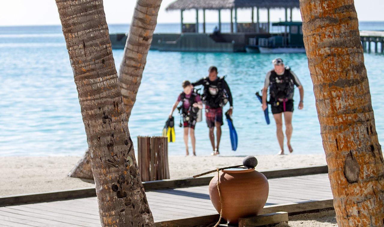 ALBE | Jak vybrat základní kurz potápění?